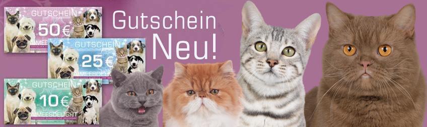 geschenkgutschein haustierbedarf shop goodies f r katzen und hunde online kaufen. Black Bedroom Furniture Sets. Home Design Ideas