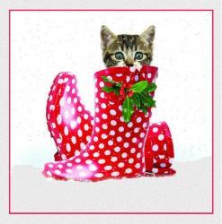 Gummistiefel Katze Weihnachtskarte In Boots Im Puss uOZTwPkXi